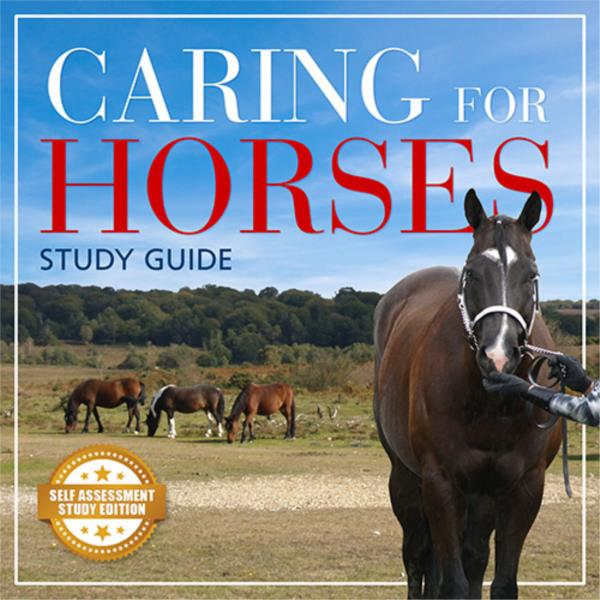 Caring for Horses - Short Course