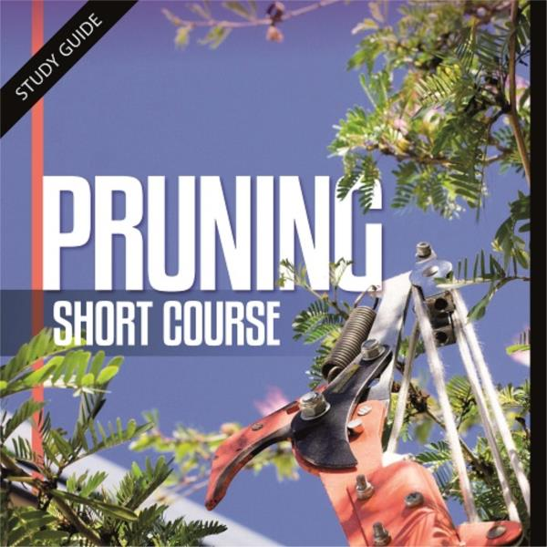 Pruning- Short Course
